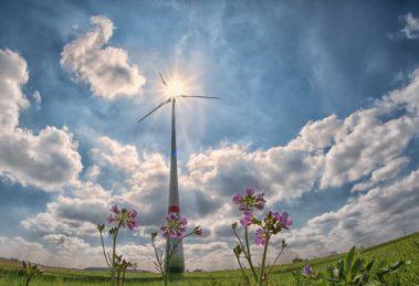Wij voeren namens zeventien gemeenten en de provincie Noord-Holland diverse milieutaken uit. Denk hierbij aan thema's als energie, duurzaamheid, luchtkwaliteit, kwaliteit van de bodem, geluid, veiligheid en flora & fauna